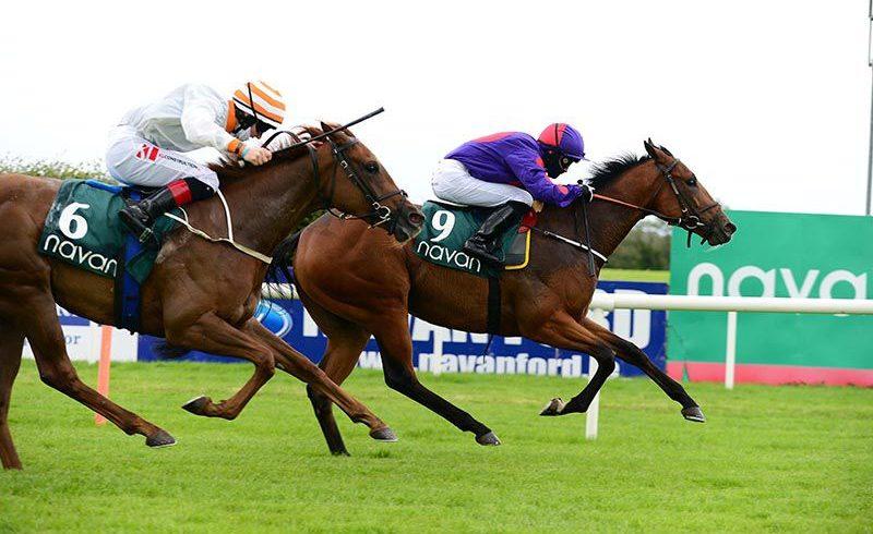 Diamond Eyes shows great dash to win at Navan